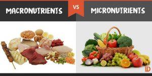 macronutrients-vs-micronutrients-800x400