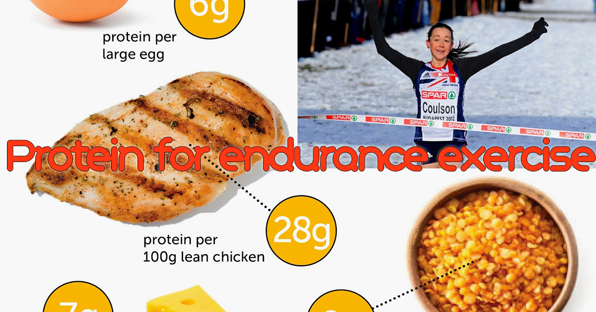 Protein for endurance exercise: Eat big, run fast.